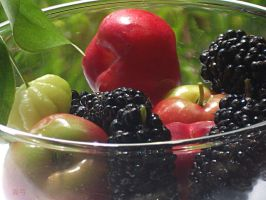Berries! Mulberry, Acerola and Pitanga by seek-and-hide