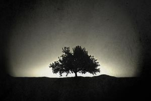 twilight by HannaKannibal