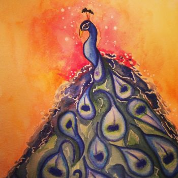 The proud peacock by mandykip