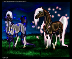 A night under the stars by TowaTheStallion45