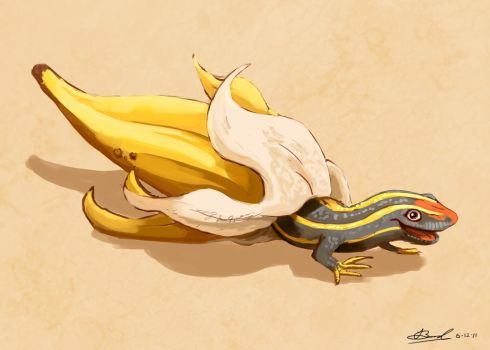 Banana Skink by GarlicEyes
