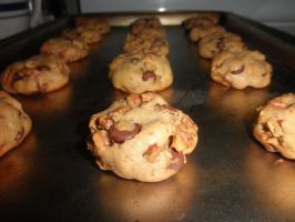 Chocolate chip cookies (with walnuts) by TheGhostlyPoet