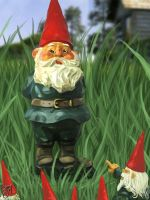 Garden Gnome by martianink