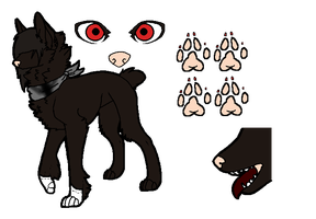 Character Ref Sheet - crowned-crooked by Feralx1