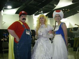 Chiisaicon - With Another Mario by FuzzyRedPants