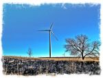 Wind Power Fields by robcdm