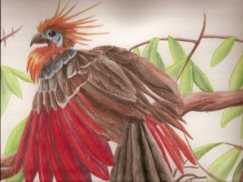 Hoatzin by Lycanthrope818