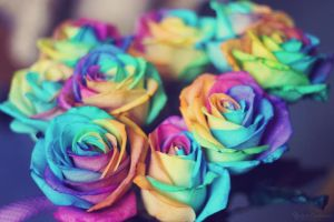 Rainbow roses by Ur6o