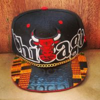 CHICAGO BULLS SNAP BACK by truthdondie