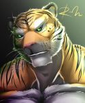 Tiger by reclamon