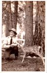 Vintage California - Deer Flats, Crystal Lake by Yesterdays-Paper
