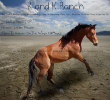 K and K Ranch by Recreation-09