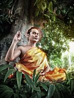 Siddhartha by celticview