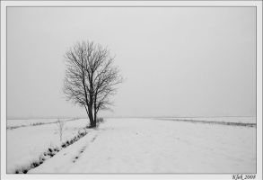 The Last Winter by Klek