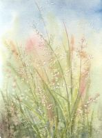 Grasses by louise-art