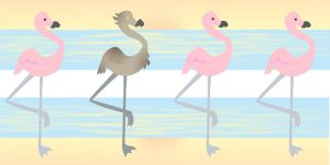 Flamingo-what by Melissasangel