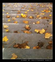 Signs of Fall 1 by vikingexposure