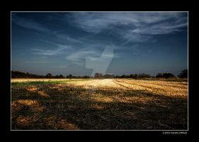 Fields 2 by grugster