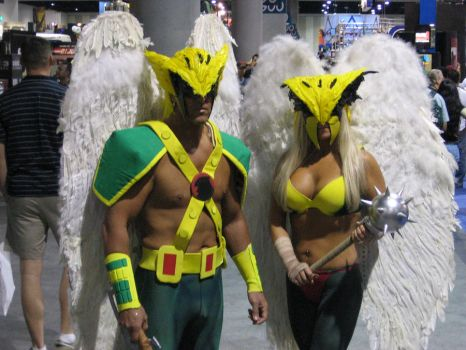 Hawkman and Hawkgirl by xpansis