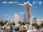 LONG CAT by Waito-chan