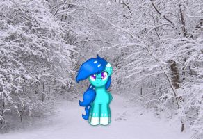 The Walk of Winter by ChilledFrost