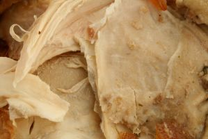 Chicken skin texture10 by faestock
