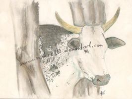 Nguni 1 by scaramouche2802