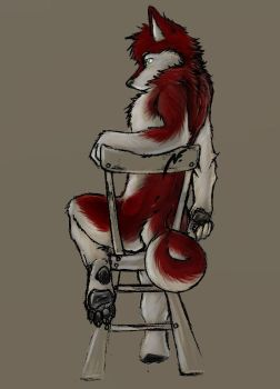 Doggie on a Chair by Macromute