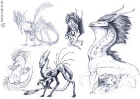 Dragon Sketchdump by Spighy