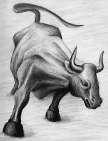 BULL by stuess