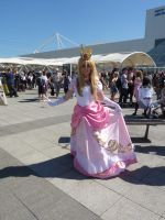 mcm expo 2012 may 45 by thebluemaiden