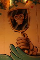 monkey in the mirror by NIC0RE