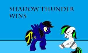 Shadow Thunder vs Ink Jet - Shadow Thunder wins by Imp344