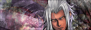 http://th00.deviantart.net/fs70/200H/f/2011/204/c/6/xemnas_forum_signature_by_freeshootxiggy-d41gj0c.png