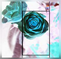 blue Rose by GLO-HE