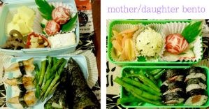 mother and daughter bento by mindfire3927