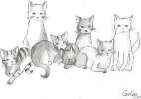 Kittens by CurCur