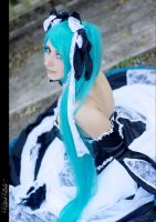 Miku by Twinkle---Toes