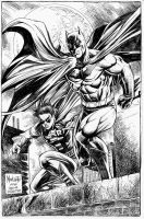 BATMAN and ROBIN by gammaknight