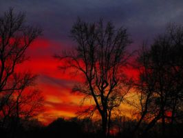 SunSet In January Day 2 #1 by HomeOfBluAndshadows