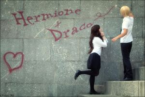 HP: dramione by viseito