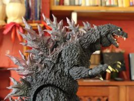 SUPERBEAST - G2K Monsterarts (1/5) by GIGAN05
