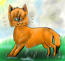 The Weather Dosen't Matter-Cat by Arkare