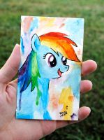 Small Rainbow Dash Watercolor by brandimillerart