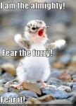 Fuzzy by onedirectionislife