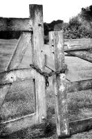 Please Shut The Gate by patchoulipatch