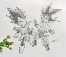 Vegeta and Goku by Vichuis