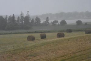 Circular Hay Bales Resting On Green, P E I 5 by Miss-Tbones