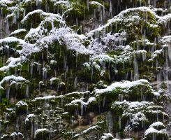 STOCK - Abstract in Snow 4 by jocarra