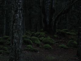 Trees 4 by Anakmoon-Stockage
